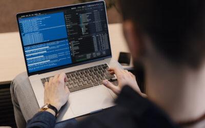 Systems Developer or Computer Programmer